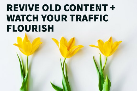 Revive Old Content - flowers flourish